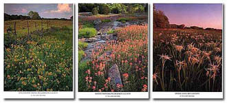Gary Regner - Browntrout Calendars
