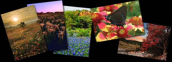 Gary Regner Photography - Note Cards