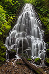 Whitehorse Falls - Oregon Waterfall Landscape by Gary Regner